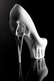 """Biomimicry Shoe"" by Marieka Ratsma and Kostika Spaho. Interesting, definitely. Pretty, maybe.Biomimicry, definitely not.Photograph by Thomas van Schaik."