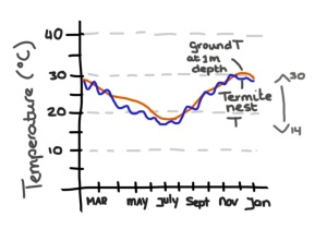 Nest temparature (blue) and ground temperature at 1m depth near nest (red)